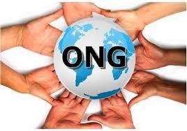 Consultări cu ONG-urile pe tema finanțărilor nerambursabile