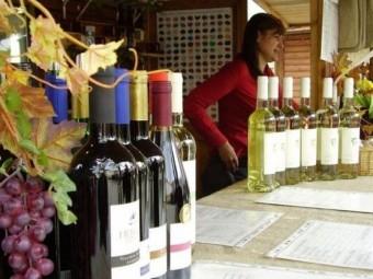Festivalul vinului, ediția 2016